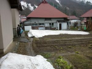 畑の雪片付け(5月1日から3日)