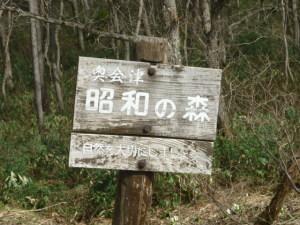 大芦へ3・小矢の原と公園あたり(5月7日)