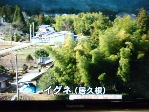 20121007_居久根(いぐね)
