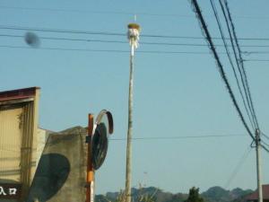 130505_下中津川、国道を南下して正法寺へ