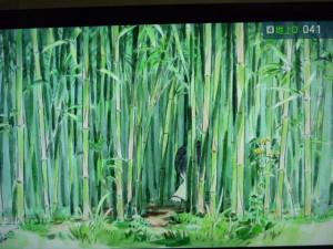 150313_かぐや姫・TV放映