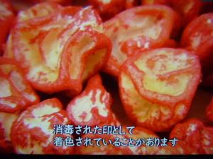 150820_トウモロコシ