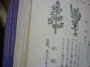 160208_薗に作る薬種(農業全書)