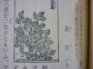 160403_農業全書・緑豆・赤小豆