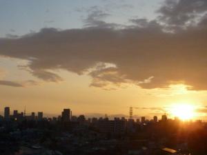 160429_昭和の日の都内の朝です