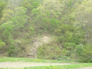 160506_はげ山のすそ